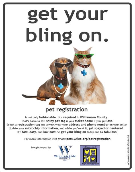 how to register a puppy pet registration
