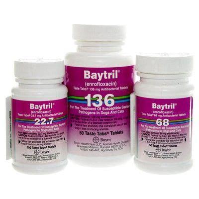 enrofloxacin for dogs baytril enrofloxacin antibiotic taste tabs vetrxdirect