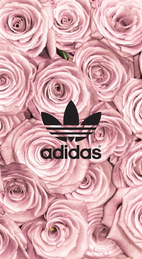 rose gold background tumblr  background check