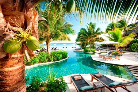 tropical resort photography abstract background