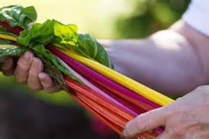 rainbow swiss chard recipe dishmaps