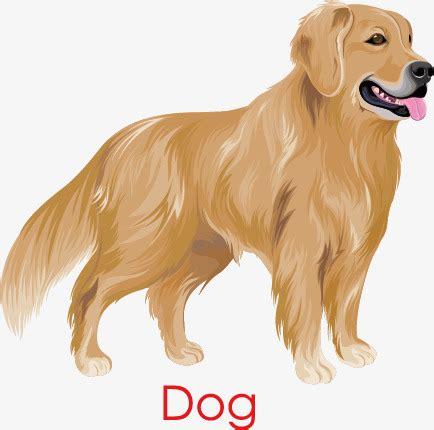 golden retriever png golden retriever perro golden pintado a mano foto png y vector para descargar gratis