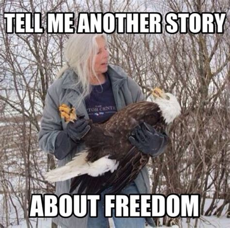 funniest bald eagle meme compilation america