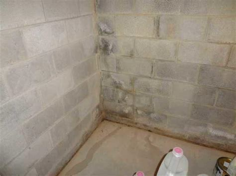 itg basement systems basement waterproofing before and