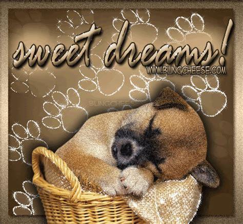 puppy dreams sweet dreams puppies photo 13229029 fanpop