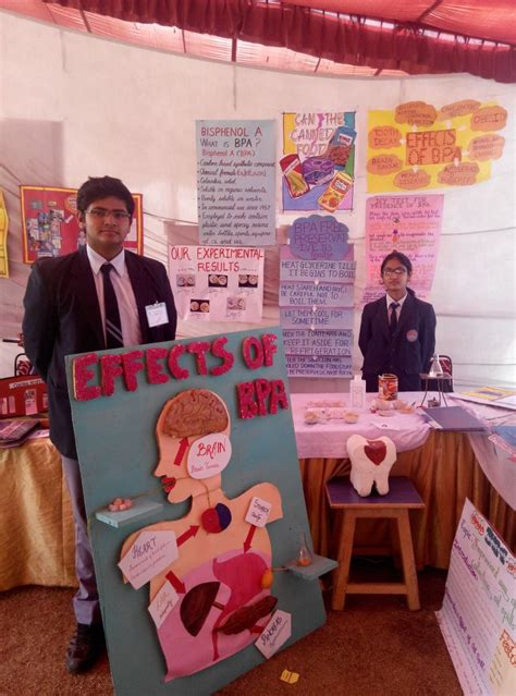 Essay On Science Exhibition In Language by Essay On Science Exhibition In Language Powerpointkeygen X Fc2
