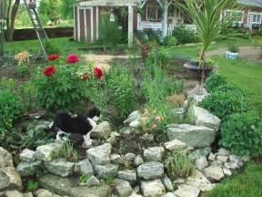 Small Garden Rockery Ideas Rock Garden Design Ideas Small Rock Garden Ideas Need Ideas For Rocks Birds Blooms Community