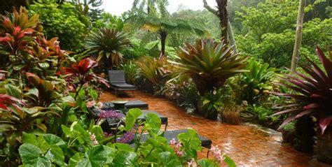 creative gardening design ideas  planted