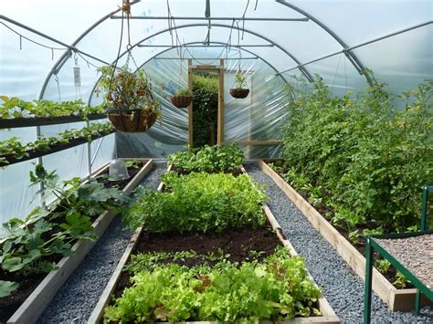 winter greenhouse gardening best 25 agriculture farming ideas on garden