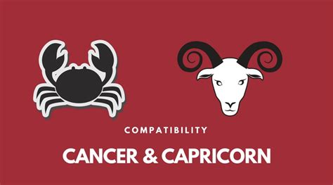 cancer and capricorn related keywords cancer and