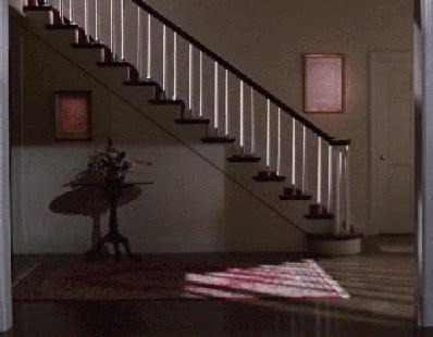 carlton sliding across floor gif 10 dogs sliding into the frame like tom cruise barkpost
