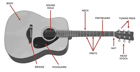 electric guitar diagram get free image about