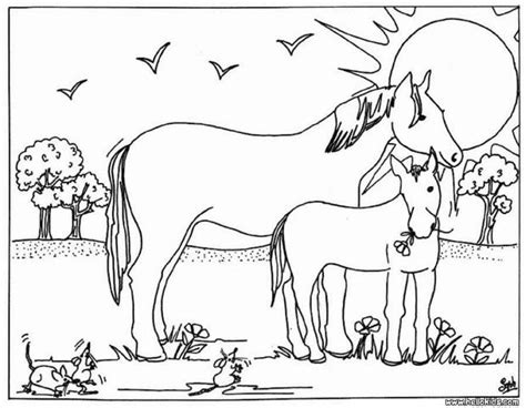 Mare And Foal Coloring Pages Hellokids