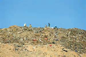 Delhi's landfill sites 'overflow' as High Court orders ...