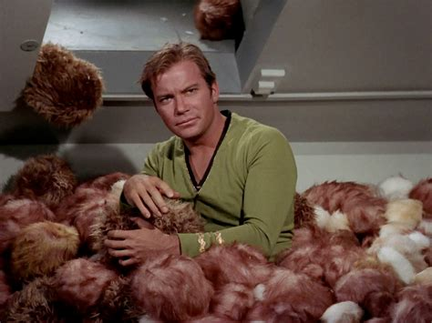 trek tribbles 50 of our shared trek moments axanar productions