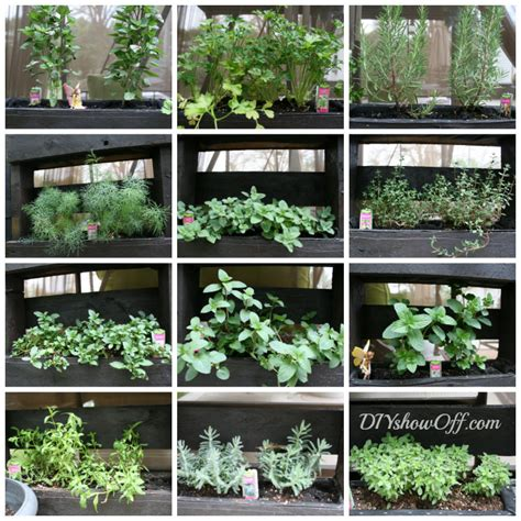 herb garden diy awesome free standing diy pallet herb garden off grid world