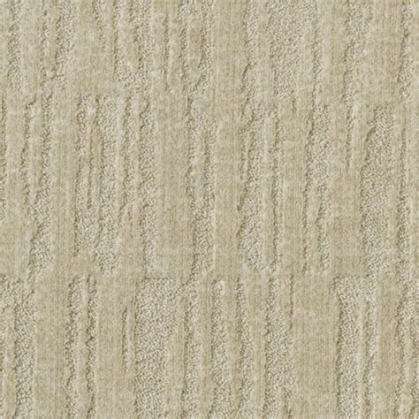 Hemphills Rugs And Carpets by Milliken Carpet Maintenance Images Dog Carpet Cleaner