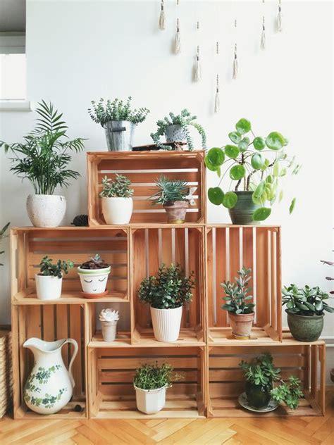 cassette di legno composizioni con piante e cassette di legno 20 bellissime