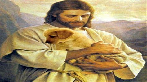 imagenes de amor hacia jesucristo jesucristo y su mensaje de quot amor quot para los animales