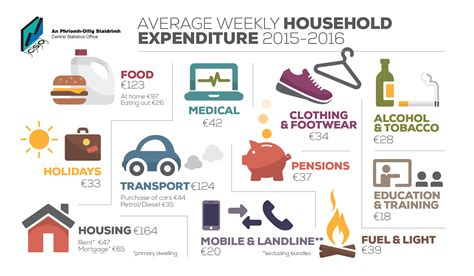 amazon household household budget survey 2015 2016 cso central