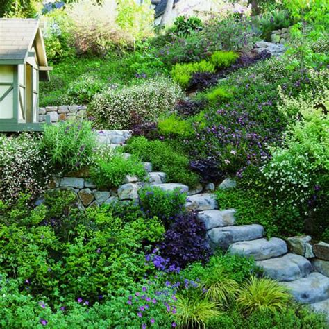 landscaping backyard slope best 25 steep hillside landscaping ideas on pinterest