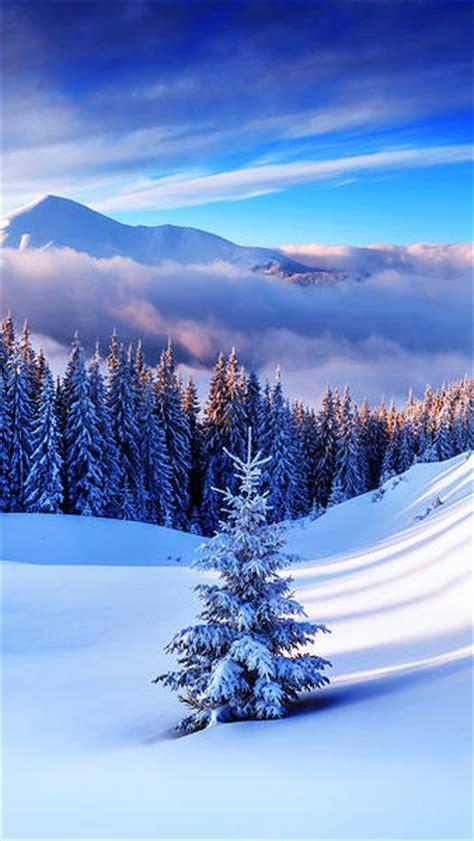winter mountain tree iphone   wallpaper gallery
