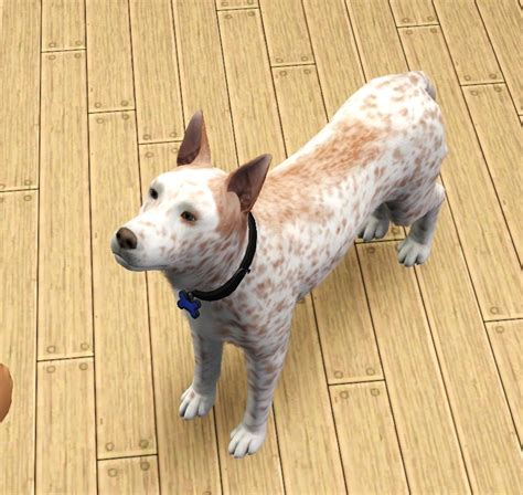puppy sim mod the sims hans gruber my real turned sim added puppy