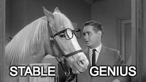 Mr Ed Meme - image tagged in mr ed imgflip
