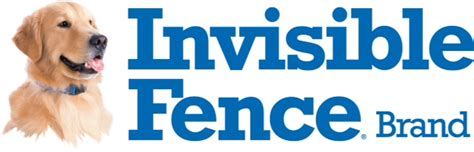 how to your with an invisible fence thank you to our friend sponsor invisible fence brand of cincinnati animal