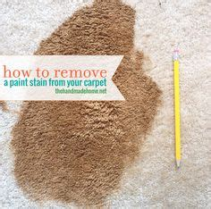 how to remove paint from upholstery remove pet hair from your carpet using a window squeegee