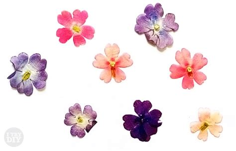how to make pressed flower l shades don t these pressed flowers look watercolored i try diy
