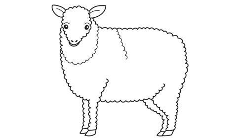 imagenes de ovejas faciles para dibujar dibujos de ovejas para colorear y pintar