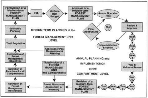 forest management plan template plan template