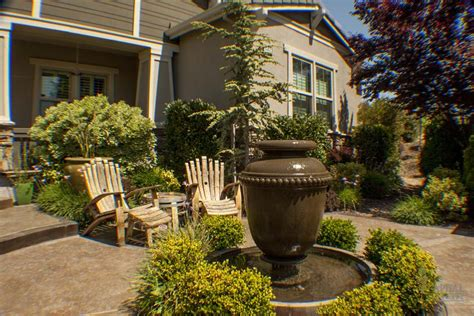 feature tree for front yard tree care 2nd pruning sacramento landscape
