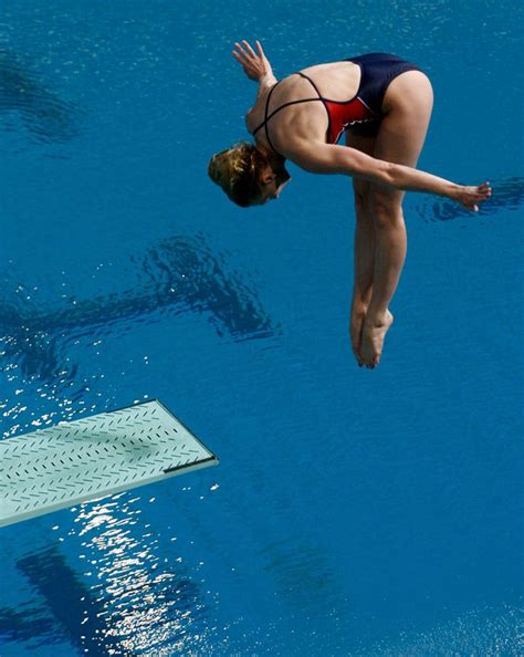 dive sports competitive dive categories springboard and platform