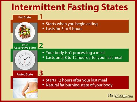 intermittent fasting 4 ways intermittent fasting improves brain function