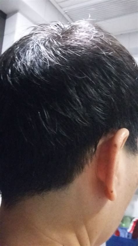 best time to cut hair almanac best time to cut hair rat tail hair cut best hair