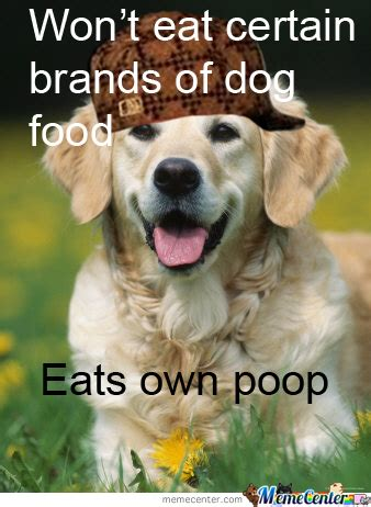 Dog Logic Meme - dog logic by pana90 meme center