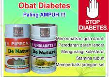 Agaricpro Obat Herbal Diabetes Uh obat herbal diabetes