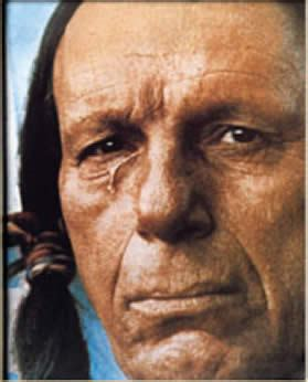 the inconvenient indian a curious account of in america books the inconvenient indian a curious account of