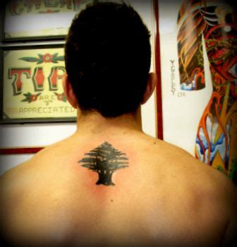 cedar tree tattoo cedar tree of lebanon i want this on my wrist only if