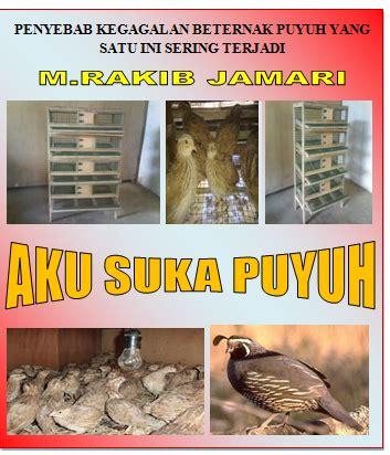 gambar kandang burung puyuh petelur yang ideal miniatur mister rakib blog pekanbaru riau indonesia syair burung puyuh