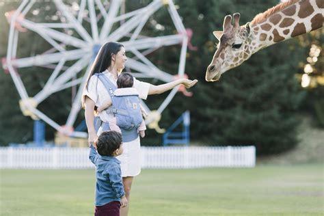 Ergobaby Original Adapt La Girafe Festival ergobaby baby carrier adapt la girafe festival buy at kidsroom strollers