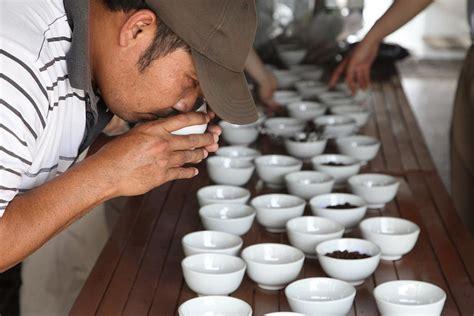 jenis jenis kopi sumatera majalah otten coffee