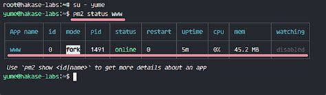 node js pm2 tutorial how to deploy node js applications with pm2 and nginx on