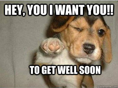 Get Well Soon Meme Funny - best 25 get well soon funny ideas on pinterest