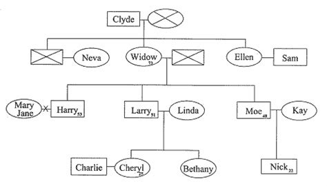 how to draw a family tree diagram drawing a family tree chart beatiful tree