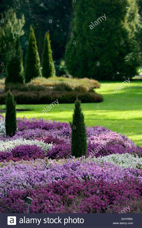 Garten Dicht Pflanzen by Erica Carnea Heidekraut Wei 223 E Blume Garten Pflanze Winter