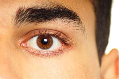 imagenes de ojos de jaguar blefaroespasmo tengo un temblor en el ojo 191 qu 233 es