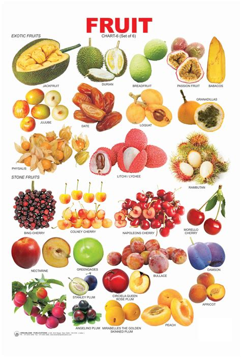 6 fruits name all fruits name learn gt fruit chart 6 pictures